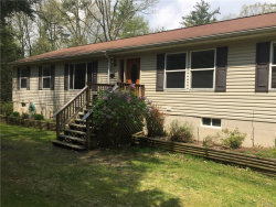 Photo of 720 Peenpack Trail, Sparrowbush, NY 12780 (MLS # 4821972)