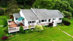 Photo of 8 Eagin Road, Livingston Manor, NY 12758 (MLS # 4824201)