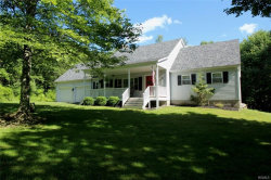 Photo of 452 White Roe Lake Road, Livingston Manor, NY 12758 (MLS # 4829785)