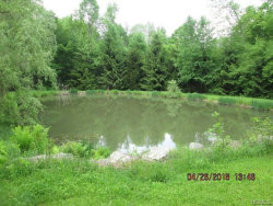 Photo of 1856 River Road, call Listing Agent, NY 13856 (MLS # 4830459)