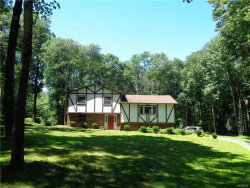 Photo of 54 Ritter Road, Stormville, NY 12582 (MLS # 4832954)