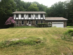 Photo of 29 Deforest Road, South Fallsburg, NY 12779 (MLS # 4833182)