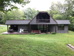 Photo of 62 Wellesly Road, Bloomingburg, NY 12721 (MLS # 4833751)