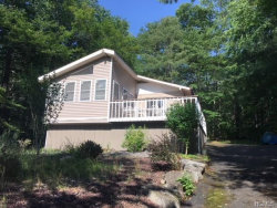 Photo of 176 Lake Shore Drive, Monticello, NY 12701 (MLS # 4833834)