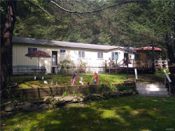 Photo of 55 Collins Road, Eldred, NY 12732 (MLS # 4835351)