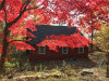 Photo of 112 East Thompson Place Tr 103d, Smallwood, NY 12778 (MLS # 4836899)