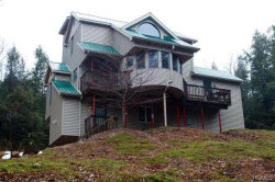 Photo of 633 Swamp Pond Road, Unit 29, Narrowsburg, NY 12764 (MLS # 4838079)