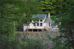 Photo of 455 Peas Eddy Road, Hancock, NY 13783 (MLS # 4838097)