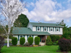 Photo of 3 Sturr Lane, Florida, NY 10921 (MLS # 4845376)