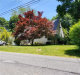 Photo of 19 Overlook Road, Ardsley, NY 10502 (MLS # 4853094)
