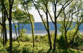 Photo of 7 Riverpointe Road, Hastings-on-Hudson, NY 10706 (MLS # 4901537)