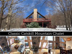 Photo of 440 Red Kill Mountain Road, Denver, NY 12430 (MLS # 4902341)