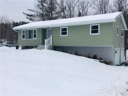 Photo of 11 Cornfield Road, Middletown, NY 10940 (MLS # 4903951)