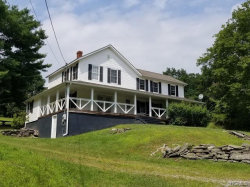 Photo of 396 Irish Town Road, Narrowsburg, NY 12764 (MLS # 4909829)