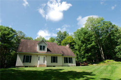 Photo of 82 Mathias Weiden Drive, Narrowsburg, NY 12764 (MLS # 4911277)