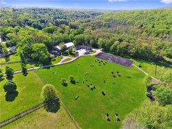 Photo of 1145 Route 35, South Salem, NY 10590 (MLS # 4920981)