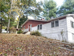 Photo of 18 Peter Road, Brewster, NY 10509 (MLS # 5116536)
