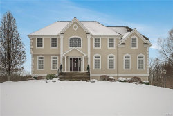Photo of 55 Viola Court, Wappingers Falls, NY 12590 (MLS # 5125282)