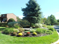 Photo of 60 Timberline Drive, Unit 60, Nanuet, NY 10954 (MLS # 4753329)