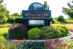 Photo of 4206 Whispering Hills, Chester, NY 10918 (MLS # 4973330)