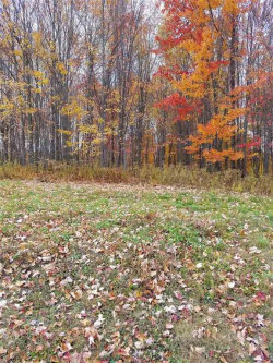 Photo of 0 State Route 55, Neversink, NY 12754 (MLS # 4216916)
