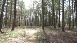 Photo of lot #5 Frazier Road, Eldred, NY 12732 (MLS # 4217618)
