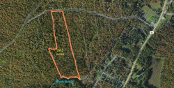 Photo of 1.18 French Clearing, Forestburgh, NY 12777 (MLS # 4218048)