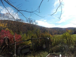 Photo of 416 State Rte. 55A, Grahamsville, NY 12740 (MLS # 4219476)