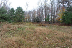 Photo of 358 Mutton Hill Road, Neversink, NY 12765 (MLS # 4219511)