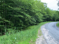 Photo of TBD Cattail, Livingston Manor, NY 12758 (MLS # 4219779)