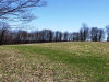 Photo of N/A Bushville Swan Lake Road, Bethel, NY 12720 (MLS # 4220212)