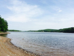 Photo of Woodstone Trail, White Lake, NY 12786 (MLS # 4525368)
