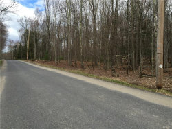 Tiny photo for Brown Road, Wawarsing, NY 12489 (MLS # 4616907)