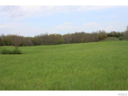 Photo of Scuderhook Road, call Listing Agent, NY 12541 (MLS # 4621309)
