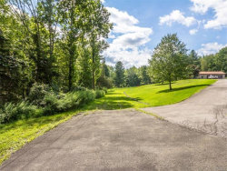 Photo of Vinegar Hill Road, Pine Bush, NY 12566 (MLS # 4639418)