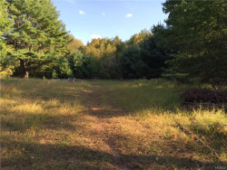 Photo of Dryer Road Tr 29, Fallsburg, NY 12733 (MLS # 4641541)