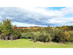 Photo of 11 (Lot 6) Primrose Lane, Blooming Grove, NY 10914 (MLS # 4650583)