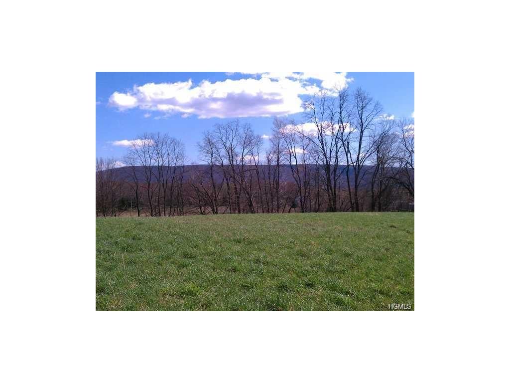 Photo for 2 Mount Airy Road Road, New Windsor, NY 12553 (MLS # 4700204)
