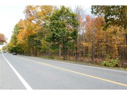 Photo of Route 300, Newburgh, NY 12550 (MLS # 4701335)