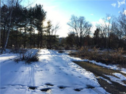 Photo of Beatty Circle, Harriman, NY 10926 (MLS # 4704053)