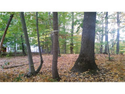 Photo of Witte Drive, Middletown, NY 12790 (MLS # 4705991)