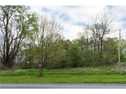 Photo of 468 Newport Bridge Road, Pine Island, NY 10969 (MLS # 4717503)