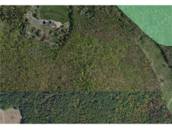 Photo of County Route 8, call Listing Agent, NY 12502 (MLS # 4717615)