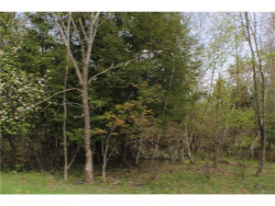 Photo of State Route 42, Neversink, NY 12765 (MLS # 4721302)
