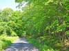 Photo of Lot 1 Alley Road, Monroe, NY 10950 (MLS # 4728947)