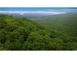 Photo of Mt View Drive, Ellenville, NY 12428 (MLS # 4732447)