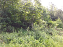 Photo of Woodland Drive, Woodbourne, NY 12788 (MLS # 4737358)
