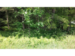 Photo of Interstate 86, Liberty, NY 12754 (MLS # 4737372)