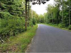 Photo of Diamond Road, Ellenville, NY 12428 (MLS # 4737631)