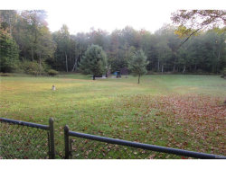Photo of 35 Painter Hill Road, Mountain Dale, NY 12763 (MLS # 4745478)